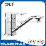 Singolo miscelatore fissato al muro del rubinetto dell'acquazzone della stanza da bagno del bicromato di potassio del quadrato della maniglia