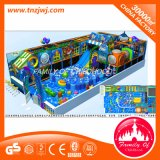Спортивная площадка мягкой игры океана оборудования зрелищности детей крытая для сбывания