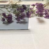 glace grise européenne de couleur de 3mm pour la décoration/construction