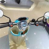 Re Electric Scooters /Bikes della tartaruga con il Batteria-Ce del litio