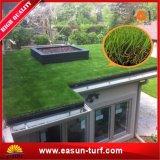 Het Decor van het Gazon van het gras met Natuurlijk het Modelleren van de Tuin Gras