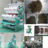 高いピクセル巨大な容量の最もよい品質のTrueColor CCDの茶カラー選別機; 茶等級分けおよびSeperatingmachinery