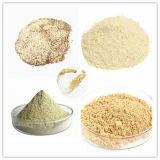 O pó do extrato da planta da pureza elevada aplicou-se no suplemento ao alimento natural