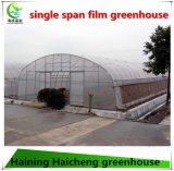 농업 실제적인 플라스틱 Fim 녹색 집