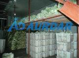 Entreposage des aliments chambre froide à pied dans le congélateur de fruits de mer en Chine en chambre froide
