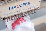 Holiauma Machine à broder 1 tête informatisé avec capuchon Tshirt broderie plat 3 fonctions principales
