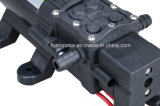 컴팩트 농업 12V / 24V 다이어프램 펌프