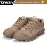 Zapatos al aire libre del ejército del desierto táctico para ir de excursión y viajar