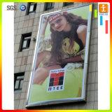 Drapeau de publicité extérieur de PVC Frontlit de grande construction