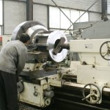 Vertical Boxing ring Die Biomass Pellet Making Machine