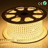 Alta Tensão de Shenzhen 5050 LED de cor única luz de Corda