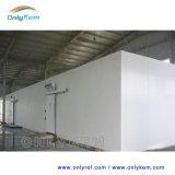 Congélateur Industrial Cold Storage avec unité de condensation pour la viande Légumes Fruits