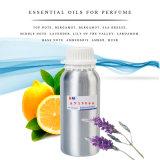 Морской бриз аромат масла высокой концентрации для парфюмерии