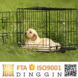 Prodotti pieganti dell'animale domestico dei doppi portelli