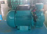 pompa ad acqua centrifuga 0.75kw/1HP per uso domestico