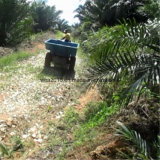 Entraîneur chaud de palmier à huile de Wea 18HP 4WD de vente
