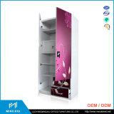 インド様式の高品質2のドアの鋼鉄寝室のワードローブデザイン