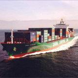 Agente de transporte do mar/oceano de China a Lyttelton, Nova Zelândia