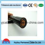 Câble d'alimentation isolé par PE/XLPE de cuivre du conducteur 1/6kv XLPE