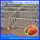 Plantaardige het Inleggen van de Mand van het Afvoerkanaal van het roestvrij staal Machine