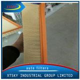 Filtro dell'aria di prezzi di fabbrica (1K0129620D) con buona qualità