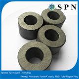 Anelli di ceramica Multipolar di Magnent del ferrito per il rotore