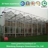 トマトおよびきゅうりの成長のためのポリカーボネートシートの温室