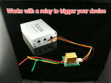 Hot Of sale of 1 Channel Of mini SD DVR Of module Of support Of german Of language