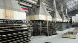 Madera contrachapada Shuttering de la película del negro de la madera contrachapada de la madera contrachapada 18m m