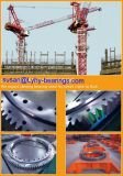Engranajes internos que matan los rodamientos A9-54n2 de la placa giratoria de los rodamientos de bolas de Rotek de los rodamientos de los anillos para grúa