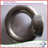 DIN 582 professionnels de galvanisation en acier au carbone de l'écrou du boulon à oeil