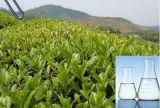 40% de árbol de té Aceite esencial utilizados como aditivos alimentarios