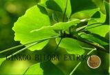 (Het Uittreksel van Ginkgo Biloba) --Flavones 24% Lactones 6% Ginkgo Biloba