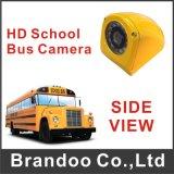 Левый взгляд, правый взгляд, взгляд сверху, камера автомобиля вид сзади, желтая камера школьного автобуса цвета, автомобиль DVR Cam-611
