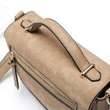 para os sacos de mão de couro das cores