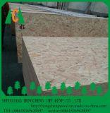 Tipo impermeável dos painel de fibras do uso interno \ OSB para a mobília