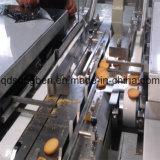 na máquina de embalagem do biscoito da borda com arrumação e alimentador