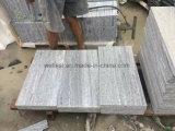 Het Grijze Graniet van Taifun, Nero Santiago, het Bedekken van Biasco Gneis Plakken