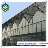 Hydroponicシステムが付いている高品質のマルチスパンのガラス温室