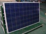 Poly panneau solaire 260W de haute performance pour le stationnement solaire