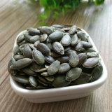 Новый урожай, котор росли без семян тыквы раковины (GWS) от Shandong Guanghua