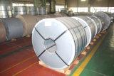 Zinnblech-Blatt oder Coil/TFS Blatt oder Ring