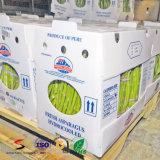 Caixa de dobramento plástica com as caixas onduladas dos PP da caixa da modificação da fruta da impressão