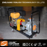Thermal Oil Circulation Pump, Pump for Hot Oil, Circulation Pump