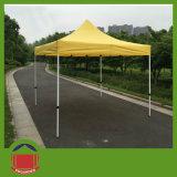 最もよい品質10*10FT様式によってはテントが現れる
