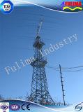 Communicatie van het Type van Kroon van Customed Duurzame Toren (flm-st-029)