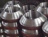 Dn600サイズにDn6使用できるWeldolet炭素鋼Weldoletsで
