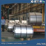 Distributore d'acciaio della bobina Zinc100