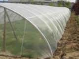 100%년 HDPE 농업 반대로 곤충 그물세공