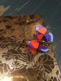 201 304 вытравили лист нержавеющей стали для декора гостиницы